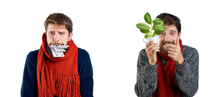 чем полезны листья брусники