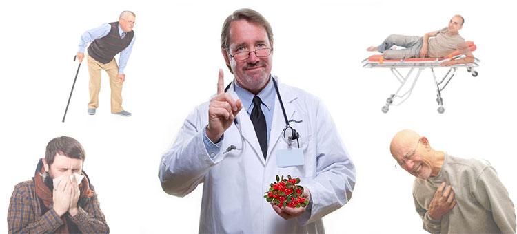 брусника полезные свойства и противопоказания
